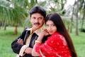 Chandu Prathista @ Swapna Sundari Movie Hot Stills