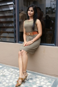 Swati Dixit Hot Stills @ Break Up Press Meet