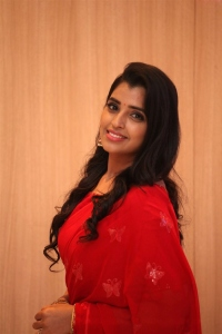 Anchor Shyamala Red Saree Pics @ Love Story Success Meet