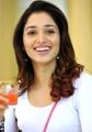 Tamanna Bhatia in Racha Movie Stills