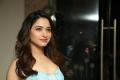 Actress Tamannaah Bhatia Latest Pics @ Next Enti Pre-Release Event