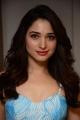 Next Enti Actress Tamanna Bhatia Latest Pics