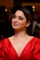 Actress Tamanna Pictures @ Gurthundha Seethakalam Movie Press Meet