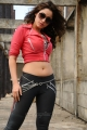 Tamanna Hot Spicy Pics in Rebel Movie