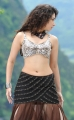 Tamanna Hot Photos in Badrinath Movie