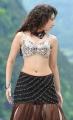 Tamanna Hot Photos in Badrinath Movie