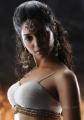 Tamanna Hot in Badrinath Movie Stills Pics photos