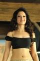 Actress Tamanna Hot Images from Cameraman Ganga Tho Rambabu