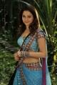 Tamanna Bhatia Hot in Racha