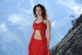 Oosaravelli Tamanna Hot Red Dress Wallpapers