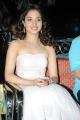 Actress Tamanna @ 100% Love Audio Release Stills