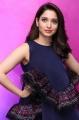 Telugu Actress Tamanna in Blue Frock Photos