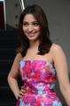 Actress Tamannaah Latest Images @ Okkadochadu Movie Promotions