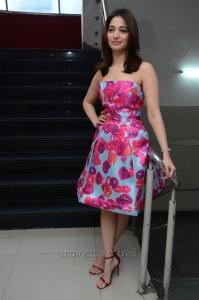 Actress Tamanna Images @ Okkadochadu Movie Promotions