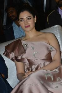 F2 Movie Actress Tamanna Photos