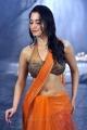 Tamanna Saree Hot Stills in Ragalai
