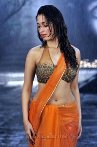 Tamanna Hot Images in Wet Saree