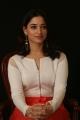 Actress Tamannaah Stills @ Abhinetri Movie Interview