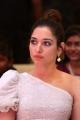 Telugu Actress Tamanna Photos @ Action Movie Pre Release