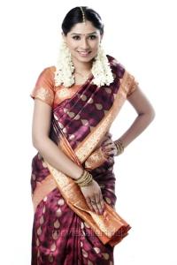 Tamil Actress Archana in Saree Photoshoot Stills