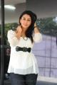 Tamil Actress Gayatri Iyer Hot Photoshoot Stills