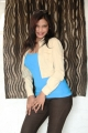Tamil Actress Shalini Naidu Latest Hot Stills