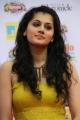 Actress Taapsee Pannu @ Tamil Edison Awards 2014 Photos