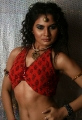 Tamil Model Tosha Hot Pictures