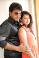 Tanish, Chandini at Devadas Style Marchadu Movie Launch Stills