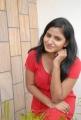 Telugu Actress Tanusha Hot Spicy Photos in Red Dress