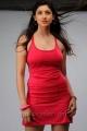 Telugu Actress Tanvi Vyas Hot Photoshoot Images
