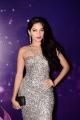 Actress Tanya Hope Hot Photos @ Zee Apsara Awards 2018 Pink Carpet