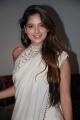 Actress Tanya Hope New Saree Images