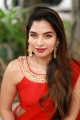 Actress Tanya Hope Red Saree Photos @ Thadam Audio Launch