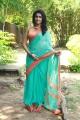 Karuppan Movie Actress Tanya Saree Photos