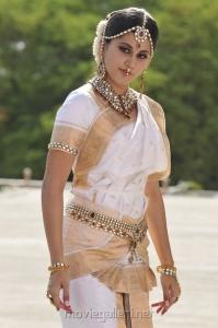 Tapasee Pannu Cute Saree Stills