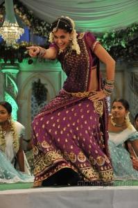 Actress Taapsee Cute Traditional Saree Photos