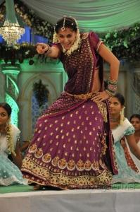 Actress Taapsee Pannu in Traditional Saree Photos