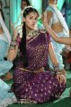 Tapsee Cute in Traditional Saree Pics