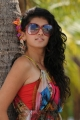 Daruvu Movie Actress Tapsee Hot Pictures
