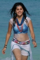 Tapsee Hot Wet Spicy Pics in Daruvu Movie