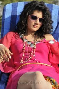 Tapsee Hot Pics in Veeraiah