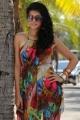 Bullet Raja Tamil Movie Actress Tapsee Hot Stills