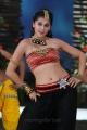 Bullet Raja Movie Actress Taapsee Pannu Hot Stills