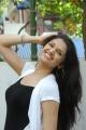 Telugu Actress Tara Alisha Stills