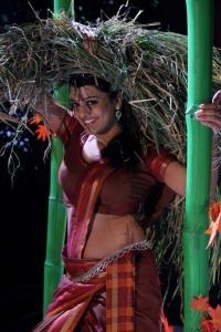 Actress Tashu Kaushik in Village Girl Dress Hot Pictures