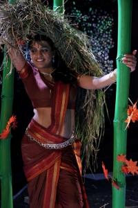 Tashu Kaushik Hot Pictures in Village Girl Dress