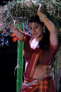 Tashu Kaushik Hot Photos in Village Girl Dress