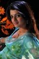 Telugu Actress Tashu Kaushik in Light Blue Saree Hot Photos