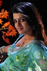 Tashu Kaushik Hot Photos in Light Blue Designer Net Saree